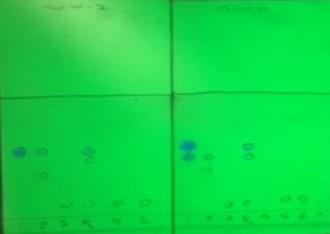 MW-RxN-TLC-purity-analysis