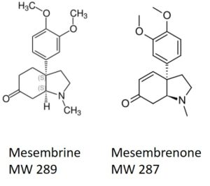 FP - Mesembrine-and-mesembrenone-300x266