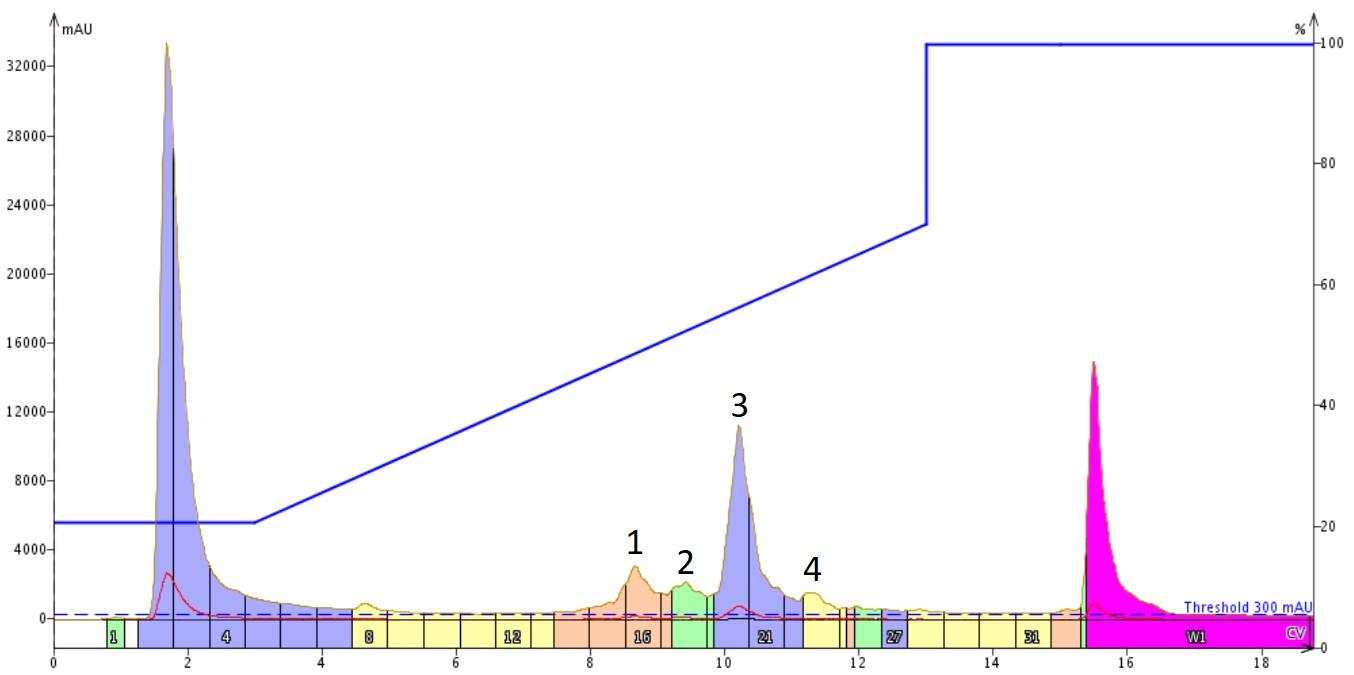 figure 1 - beth blog