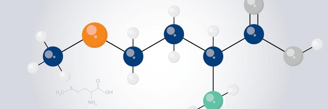 peptide methionine
